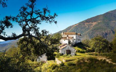 Teamup in Andalusië bij Villas & Fincas